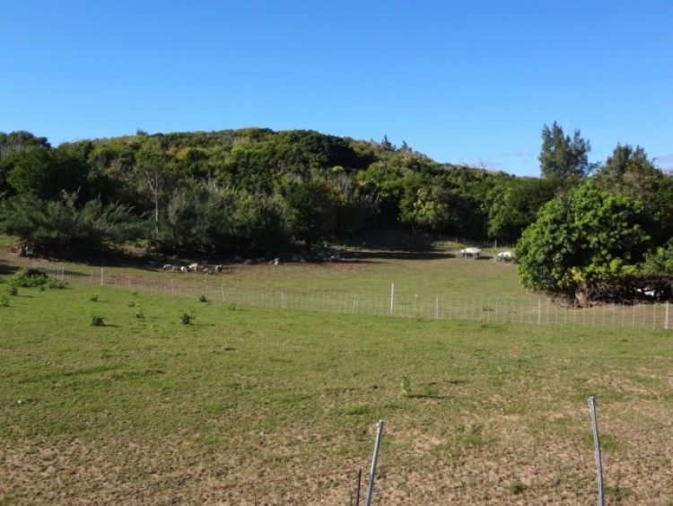 Private 10 acre Estate overlooking the Ocean - Southampton -