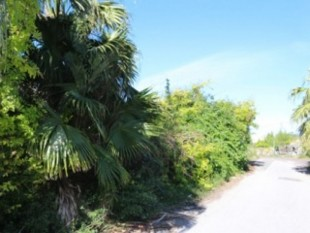 Crisson Real Estate Property Search in Bermuda - Scenic Heights/Middle Road, Southampton, Southampton, Bermuda