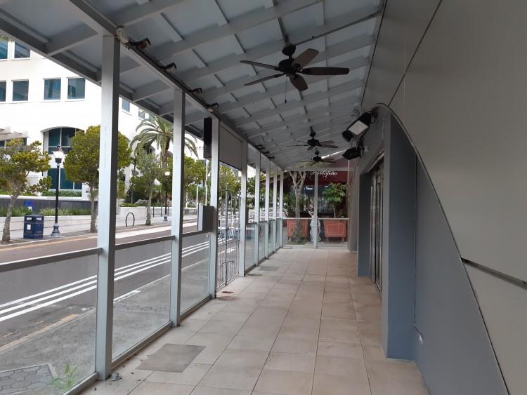 12 Bermudiana Road - Hamilton -